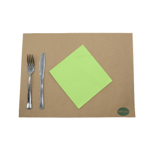 SERVIETTE ECOLABEL DOUBLE POINT 2 PLIS 33X33 CM VERT ANIS (50 U)