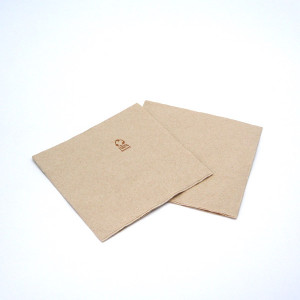 SERVIETTE ECOLABEL DOUBLE POINT 2 PLIS 33X33 CM NATURELLE (60 U)