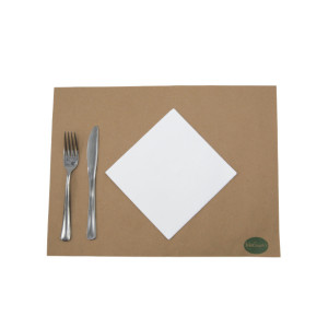 SERVIETTE ECOLABEL DOUBLE POINT 2 PLIS 33X33 CM BLANCHE (50 U)