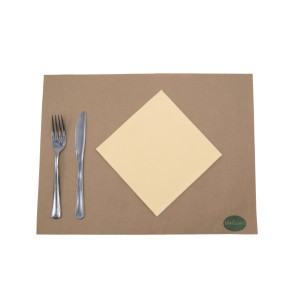 SERVIETTE ECOLABEL DOUBLE POINT 2 PLIS 33X33 CM IVOIRE (50 U)