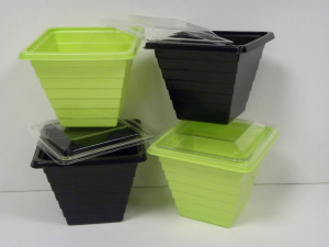 BARQUETTE PYRAMIPACK VERT ANIS 650 GRS+COUVERCLE TRANSPARENT 12X12X10 CM (40 U)