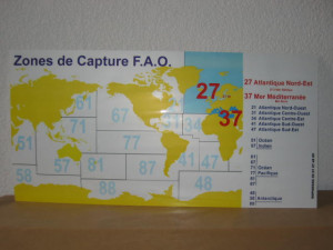 TABLEAU « ZONE DE CAPTURE F.A.O »  POISSONNERIE 30X60 CM (1 U)